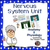 Nervous System Unit for Anatomy and Physiology and Biology