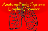 Anatomy: Body Systems Graphic Organizer