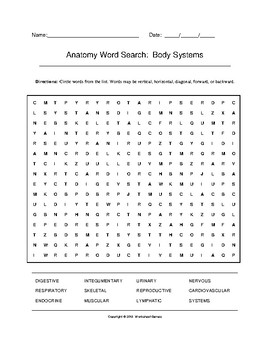 Anatomy Body Systems Word Search with Key (Grades 9-12)
