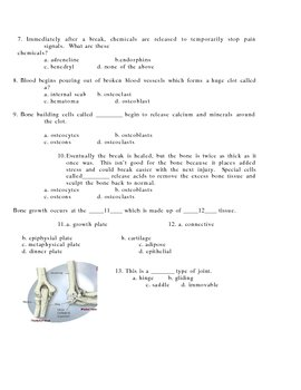 Anatomy Bone/Skeletal quiz