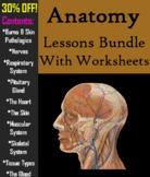 Human Anatomy and Physiology Bundle