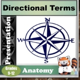 Anatomy Directional Terms