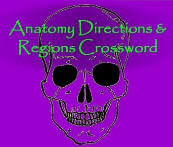 Anatomy: Directions & Regions Crossword
