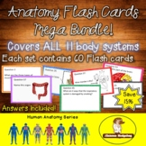 Anatomy Flash Cards Mega Bundle!