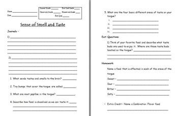 Anatomy - Human Body - Sense of Taste w/worksheet (SMART BOARD)