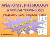 Anatomy/ Medical Terminology: Nervous System Vocabulary Scramble Game