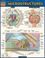 Anatomy Microstructures - QuickStudy Guide