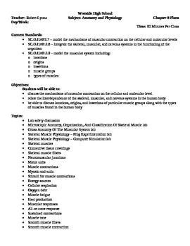 Anatomy - Muscular System Block Schedule Lesson Plan