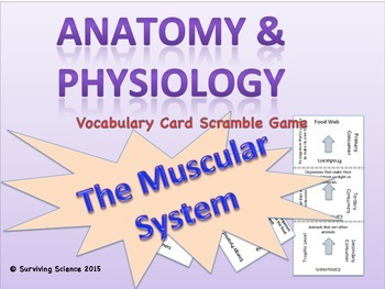 Anatomy/Medical Terminology: Muscular System Vocabulary Scramble Card Game