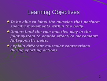 Anatomy - Muscular System and Movements