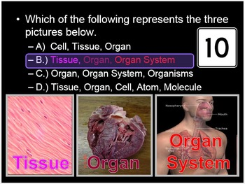 Anatomy, Levels of Organization Cell, Tissue, Human Body Quiz Game