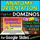 Anatomy Orientation DIGITAL DOMINOS for Google Slides