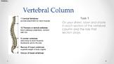 Anatomy & Physiology - 4 - Vertebral Column & Types Of Joints