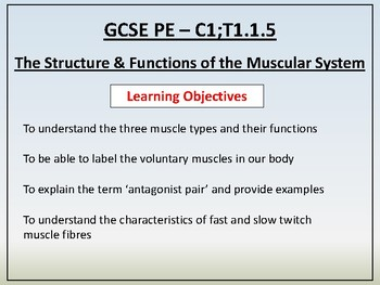 Anatomy & Physiology - 5 - Synovial Joints & Movement