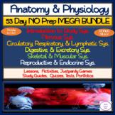 Anatomy & Physiology 53 Day MEGA Bundle