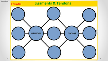 Anatomy & Physiology - 6 - Ligaments & Tendons