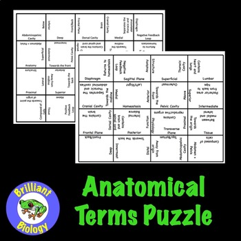 Anatomy & Physiology: Anatomical Terms Puzzle