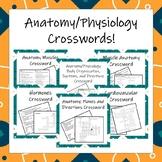Anatomy & Physiology Crosswords!