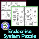 Anatomy & Physiology: Endocrine System Puzzles