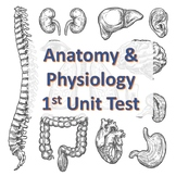Anatomy & Physiology First Unit Test