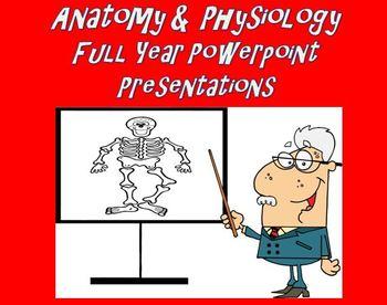 Anatomy Physiology Full Year Powerpoint Presentations Bund