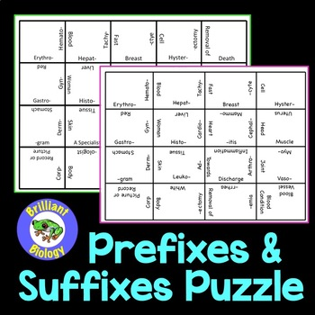 Anatomy & Physiology: Prefixes and Suffixes Puzzle by Brilliant Biology
