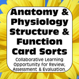 Anatomy & Physiology Structure & Function Card Sorts & Assessments AP Biology