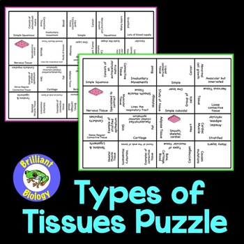 Anatomy & Physiology: Types of Tissues Puzzle