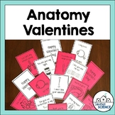Anatomy & Physiology Valentines