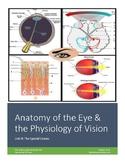 Anatomy & Physiology Worksheet 8.1: Anatomy of the Eye and