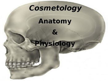 Anatomy & Physiology for Cosmetology Students