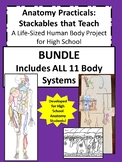 Anatomy Practicals-Life-Sized Body System PROJECT BUNDLE! Incl all 11 Systems!