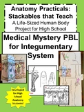 Anatomy Practicals-Life-Sized Integumentary System MEDICAL