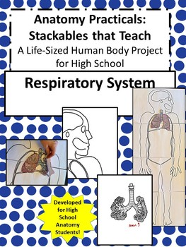 Anatomy Practicals-Life-Sized Respiratory System PROJECT!