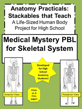 Anatomy Practicals-Life-Sized Skeletal System MEDICAL MYSTERY PBL!