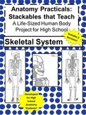 Anatomy Practicals-Life-Sized Skeletal System PROJECT!- Includes 2 Versions!!