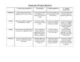 Anatomy Project Rubric