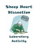 Sheep Heart Dissection Lab ~ Anatomy and Physiology