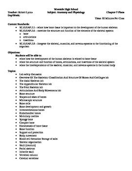 Anatomy - Skeletal System Block Schedule Lesson Plan