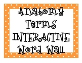 Anatomy Terms INTERACTIVE Word Wall