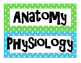 Anatomy Terms Word Wall