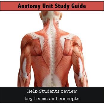 Anatomy Unit Study Guide