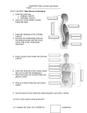 Anatomy and Physiology Body Planes and Cavities WebQuest
