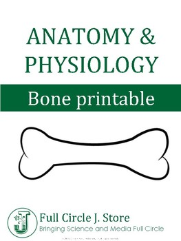Anatomy and Physiology Bone Printable, Vocabulary