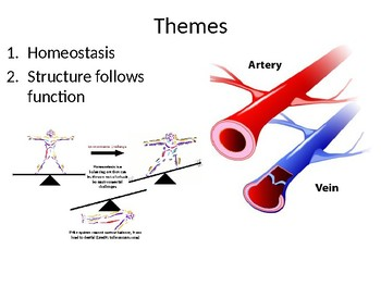 Anatomy and Physiology Course Introduction Presentation