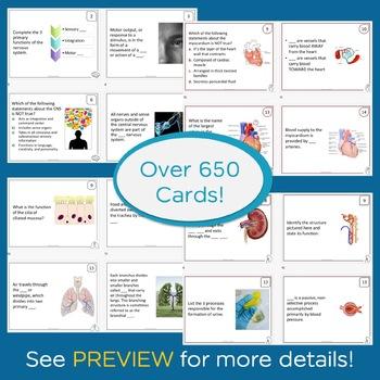 Anatomy and Physiology Task Card Bundle