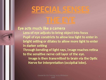 Anatomy and Physiology of Sight and Sound