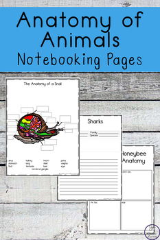 Anatomy of Animals Notebooking Pages