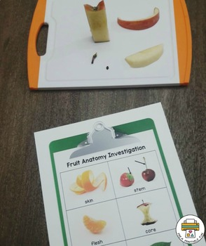 Anatomy of Fruit Science Investigation