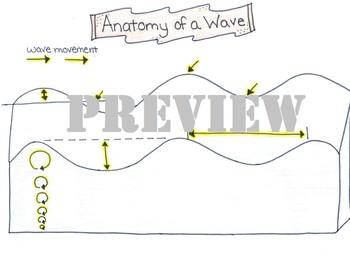Anatomy of an Ocean Wave